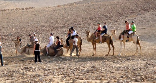 Old School Transportation in the Negev: Camel Riding