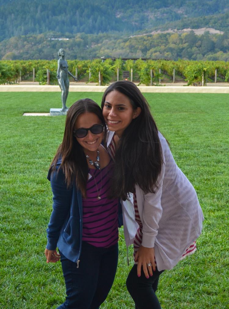 napa 10 Vineyards to Visit on Your Next Trip to Napa Valley | www.apassionandapassport.com october-61