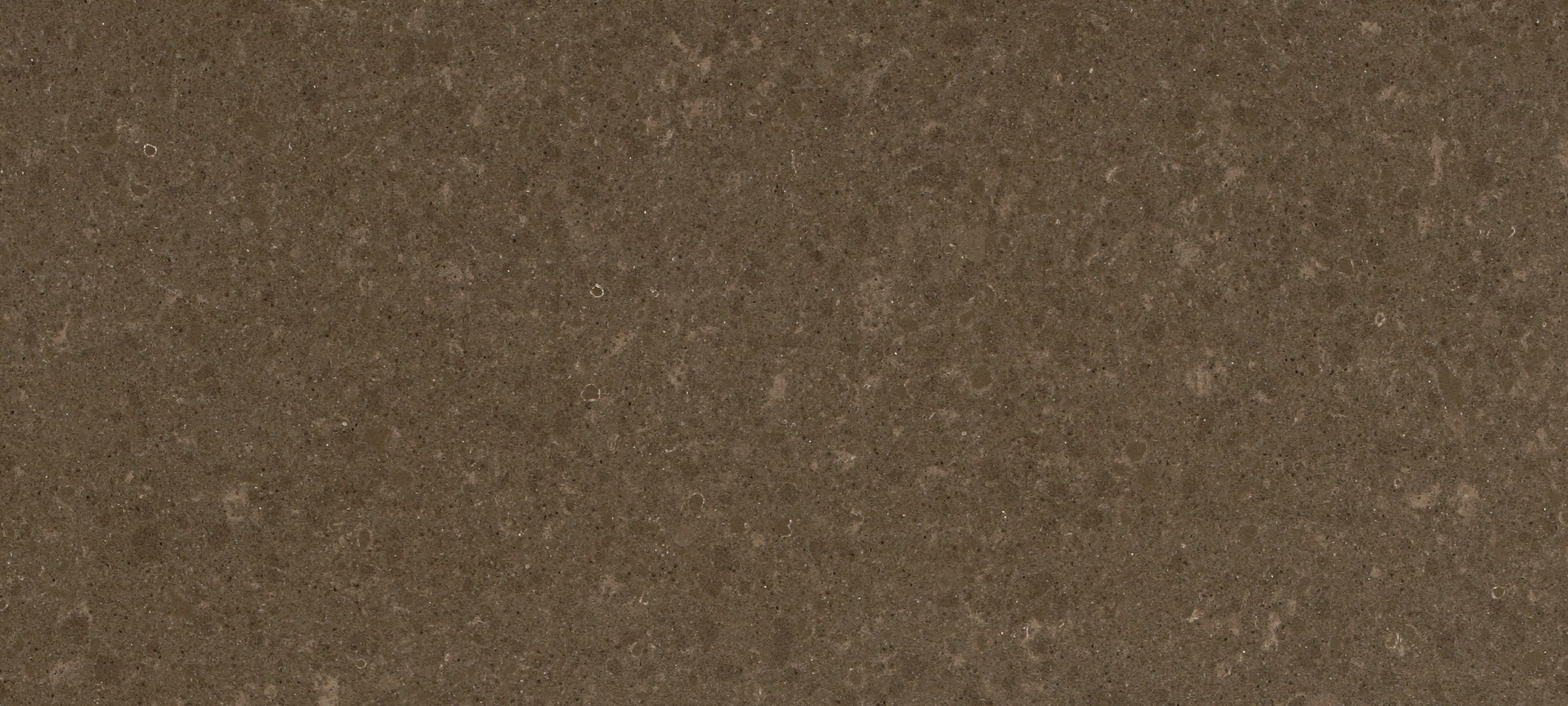 Caesarstone Countertop Thickness 4360 Wild Rice Absolute Kitchen And Granite