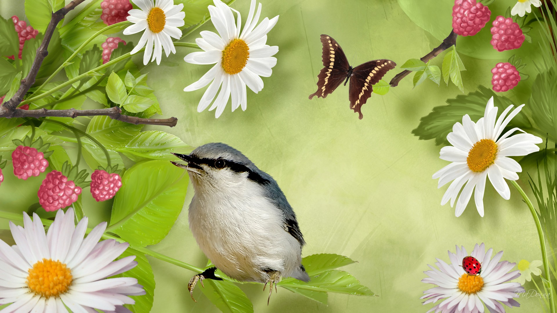 Beautiful Pictures Of Flowers And Butterflies Birds How To Attract Birds And Butterflies To Your Garden A Andp