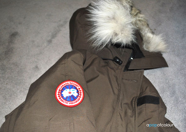canada goose real feathers
