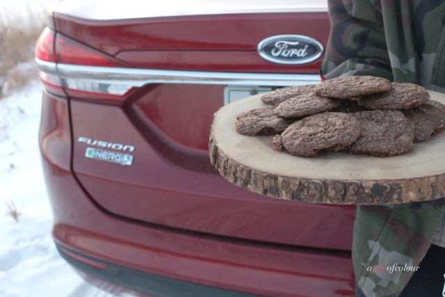 Vegan ginget molasses cookies from Oh She Glows and the 2017 Ford Fusion Energi