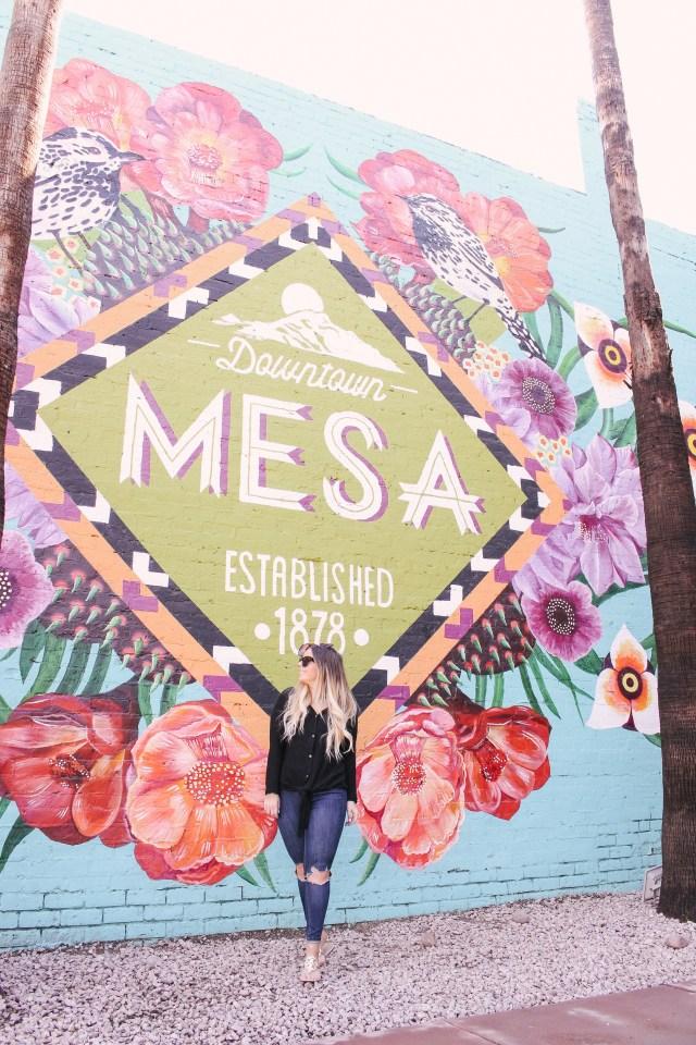 Visit Mesa wall in Mesa, AZ