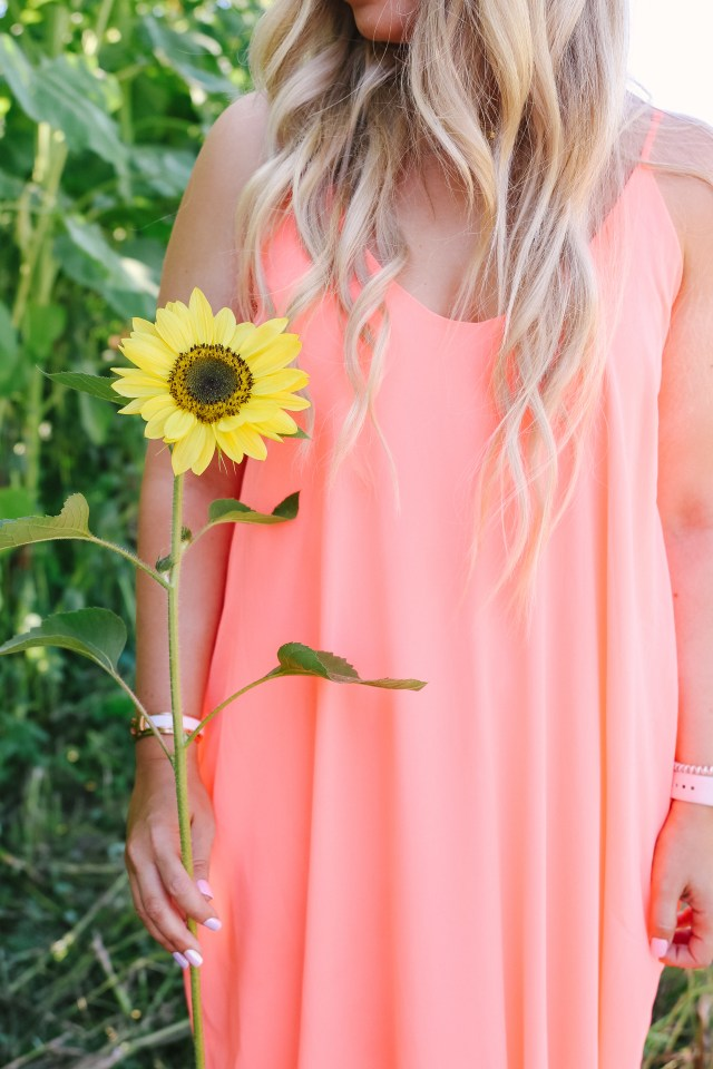 Sunflower against neon coral dress in Abbotsford, BC