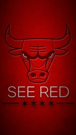 Chicago Bulls See Red