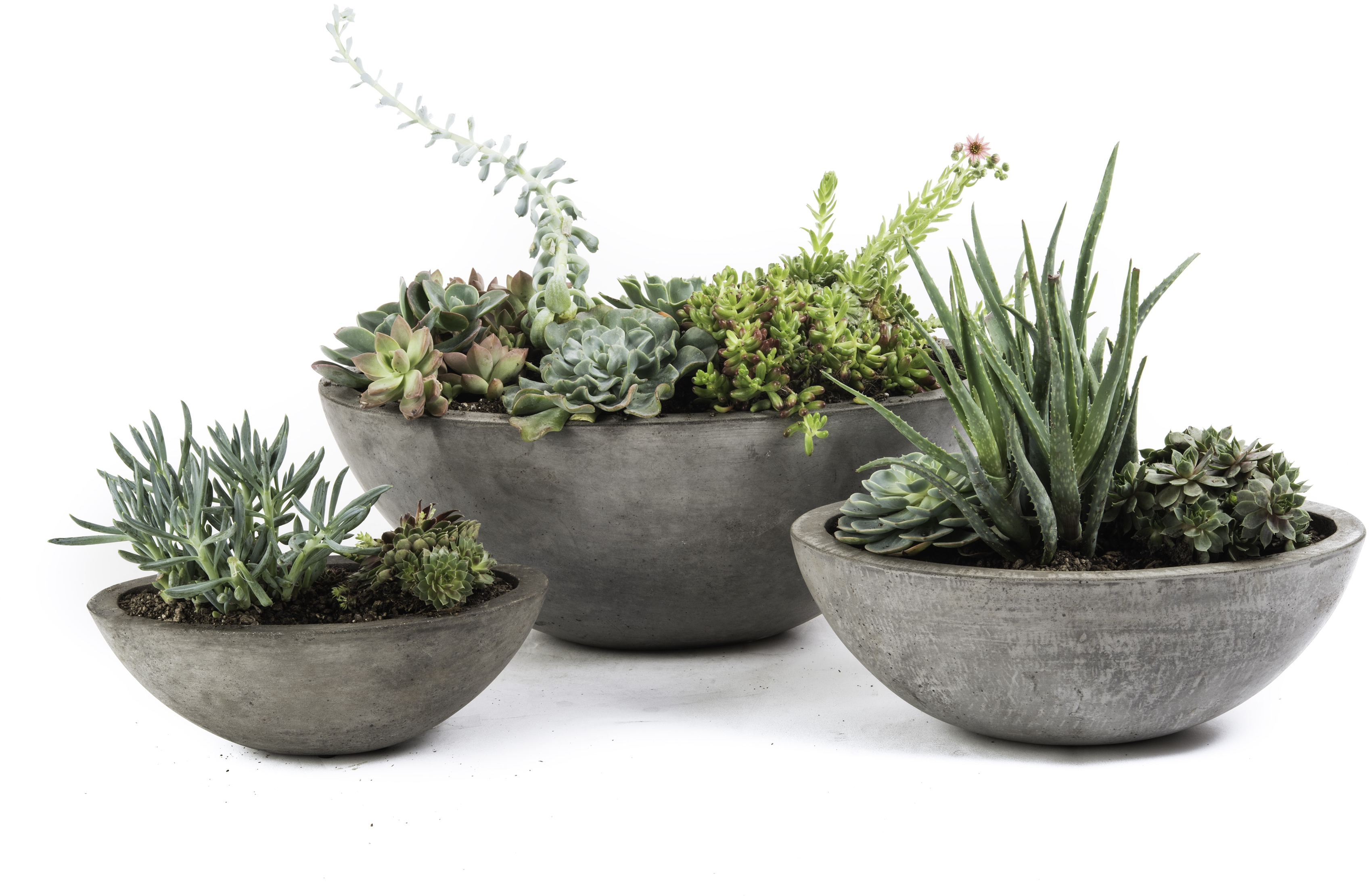 Planter For Herbs Details About Flower Planter Set Of 3 Eco Concrete Pot Soil Plant Care Herbs Garden Gift Home