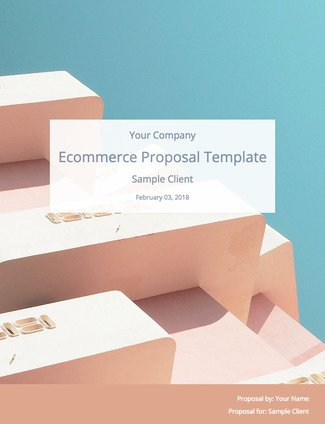 E-Commerce Proposal Template (Free Download) Bidsketch