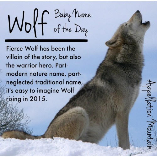 Medium Crop Of Male Wolf Names