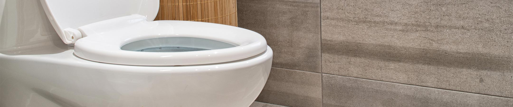Install A Toilet Toilet Repair Installation Boise Id Apple Plumbing