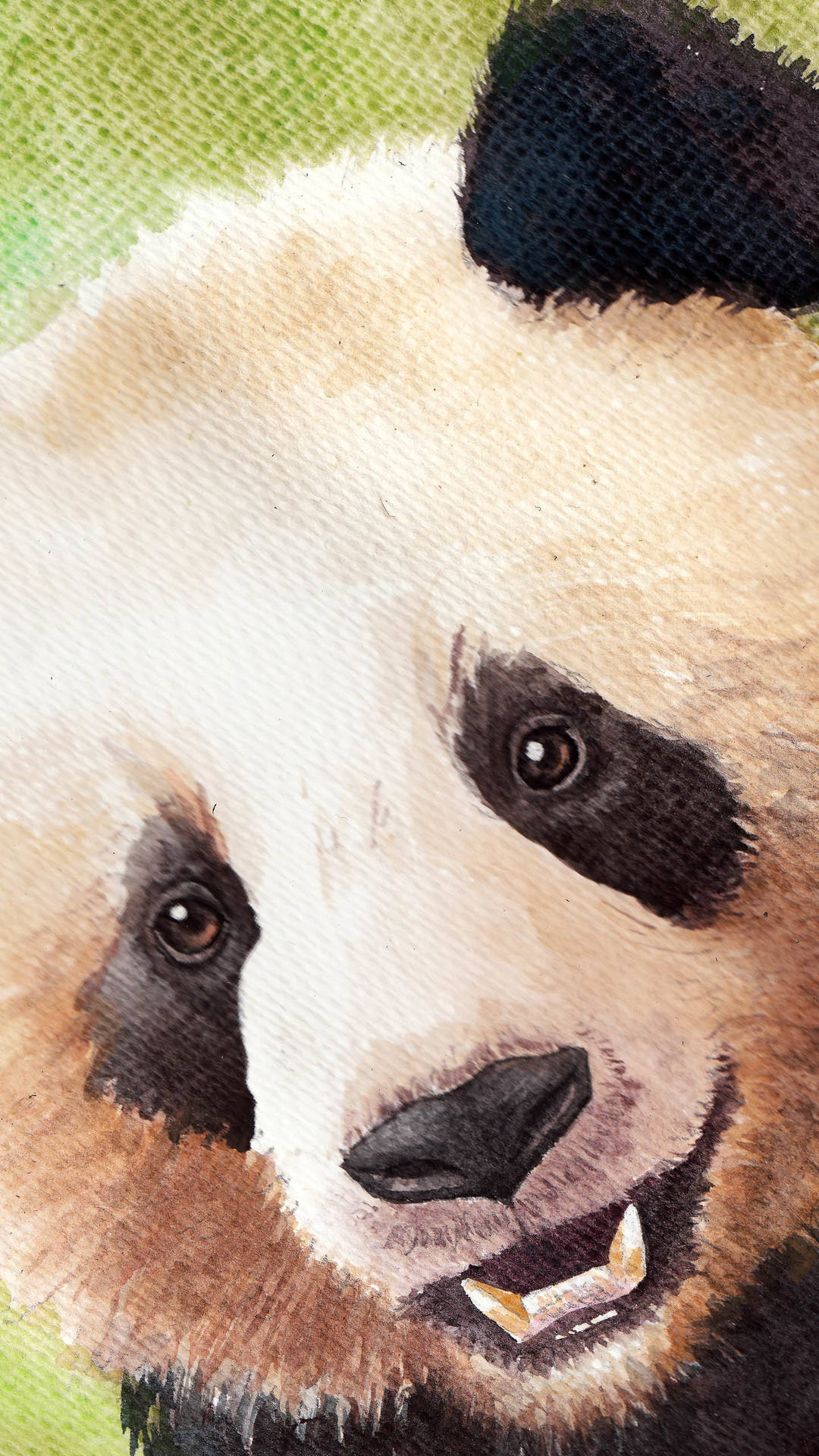 Most Beautiful Iphone Wallpapers 11 Cute Panda Wallpapers For Iphone With 1920x1080