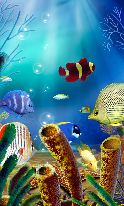 Fish Tank 3d Live Wallpaper For Pc Fish Tank Wallpaper For Iphone