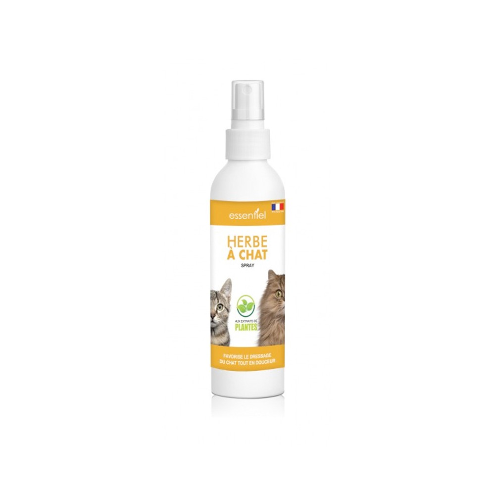 Repulsif Chat Plante Exterieur Herbe A Chat En Spray 125ml Aps Choice