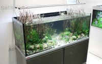 AQUACHARTS Aquaristik Magazin
