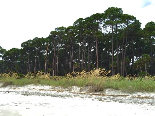 Hunting_Island_Beach