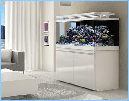 Sea Max S Series Aquariums available at 0% Finance   Aqua home Blog