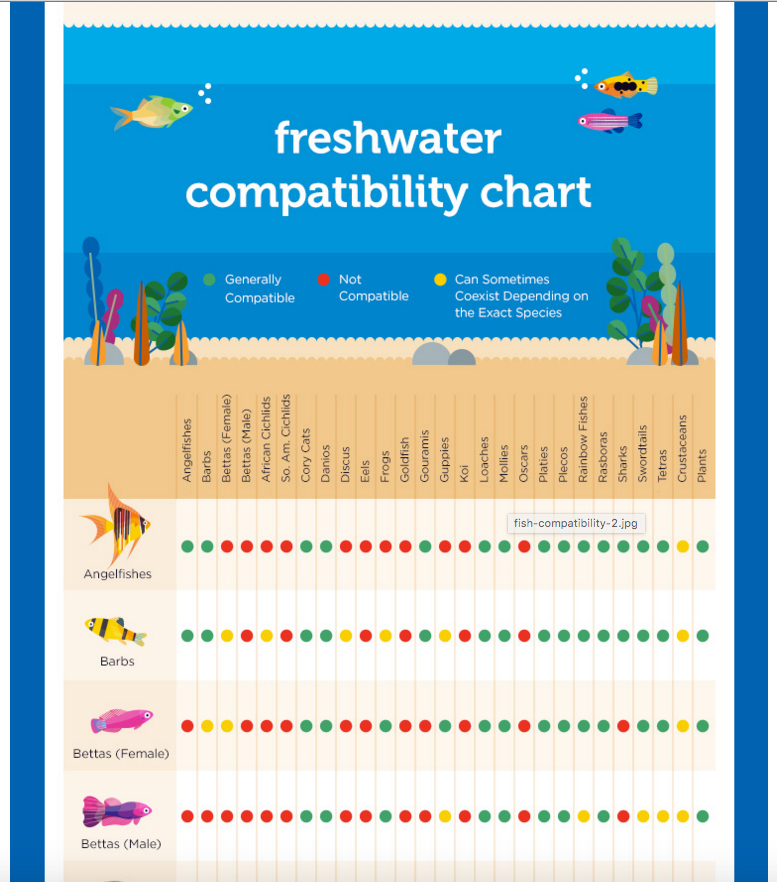 Petco Introduces a Freshwater Compatibility Chart AquaNerd