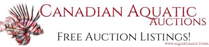canadian-auction-site-logo