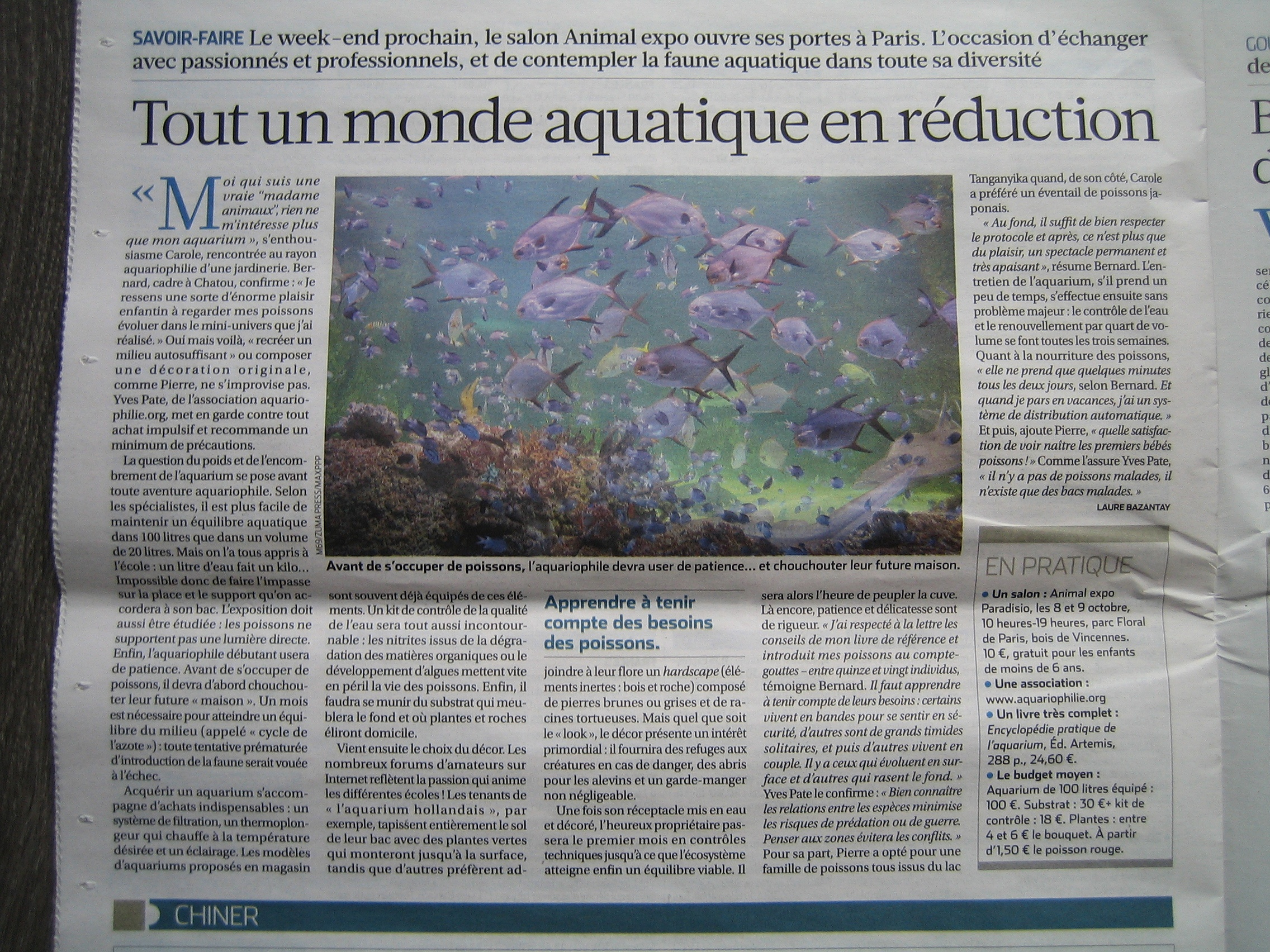 Salon De L Aquariophilie On Parle De Nous