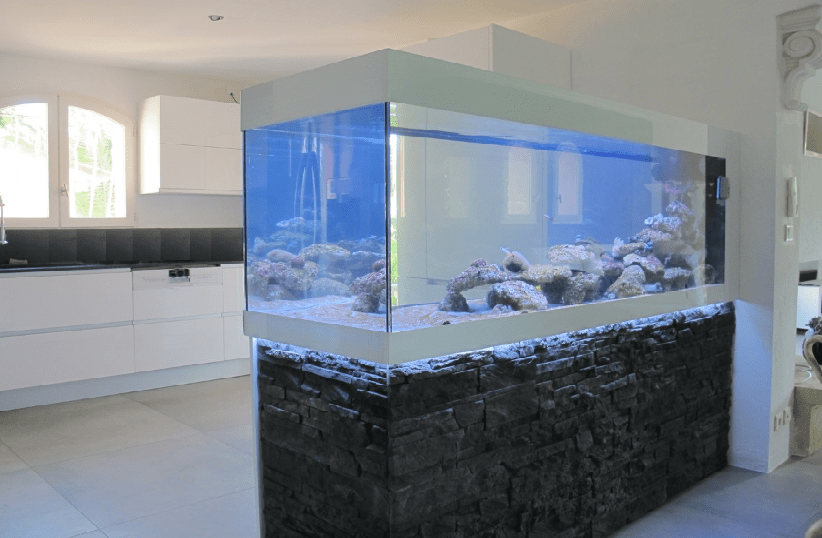 Fabrication Meuble Aquarium Sur Mesure Fabrication Vente Aquariums Eau De Mer Recifal | Odyssee