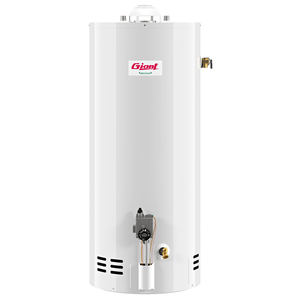 Chauffe Eau Rheem Rur199in Tankless Water Heater With Recirc