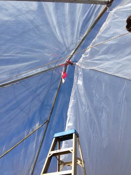 wind-in-shed-2_med