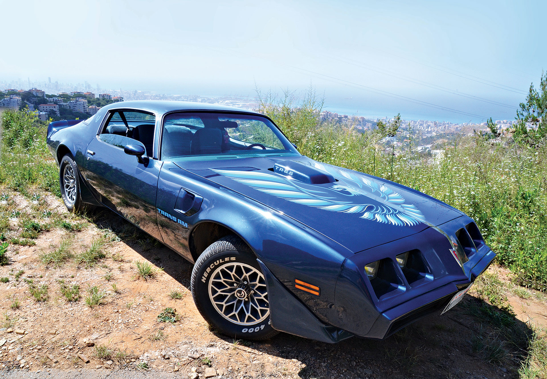 1979 Trans Am Picture 1979 Trans Am Muscle Car Inspired By Racing Arab Motor World