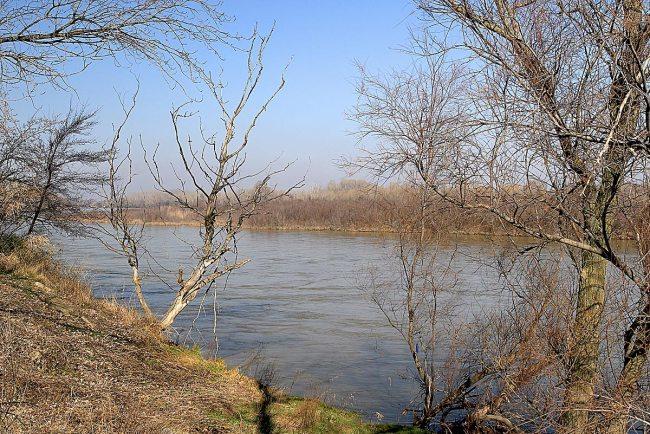 Galacho de la Cartuja, en en el río Ebro.