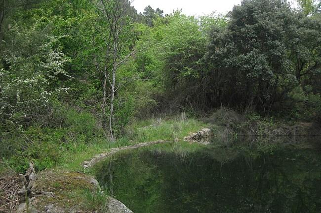 Balsa de Villar del Mon (Sediles).