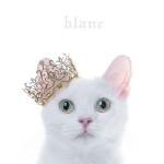 """blanc"" Regular Edition + Limited Edition B"
