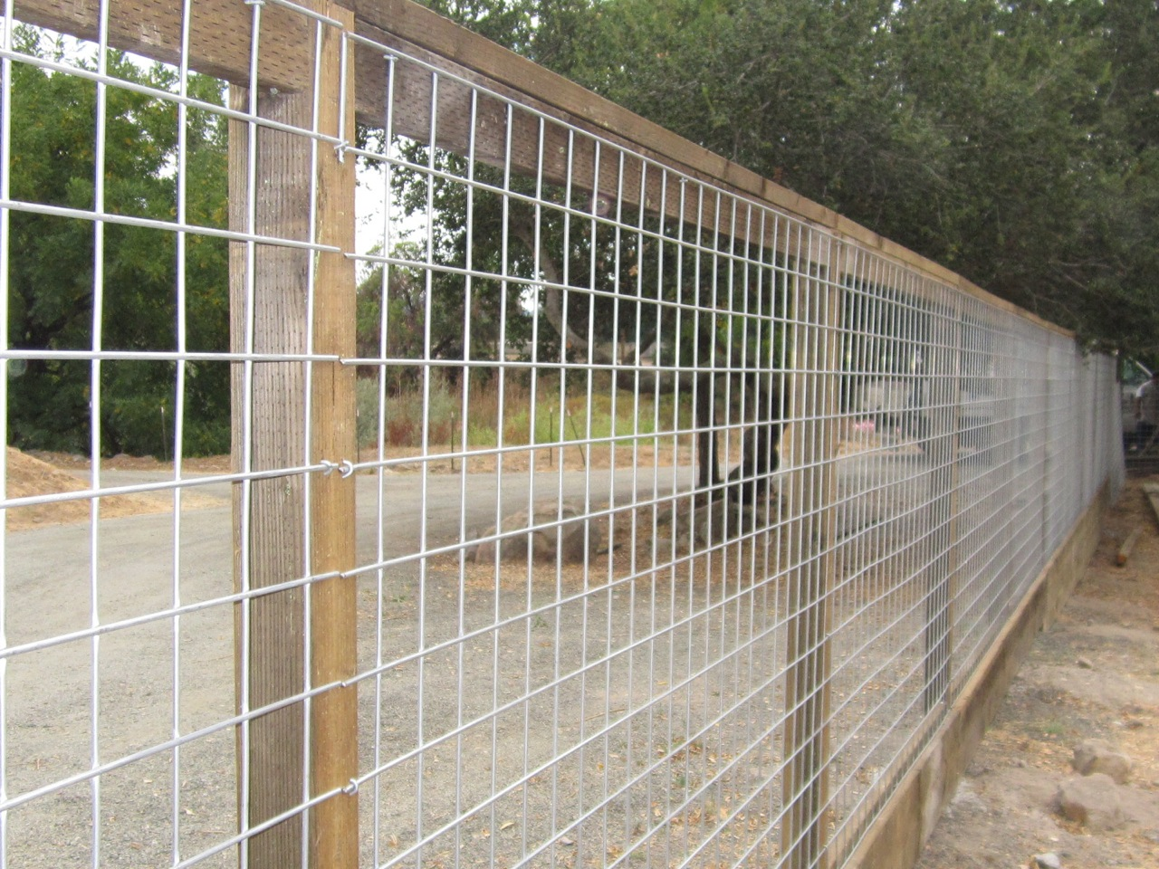 Wire Fencing 44 24 Hi Five Wire Panels Arbor Fence Inc A Diamond