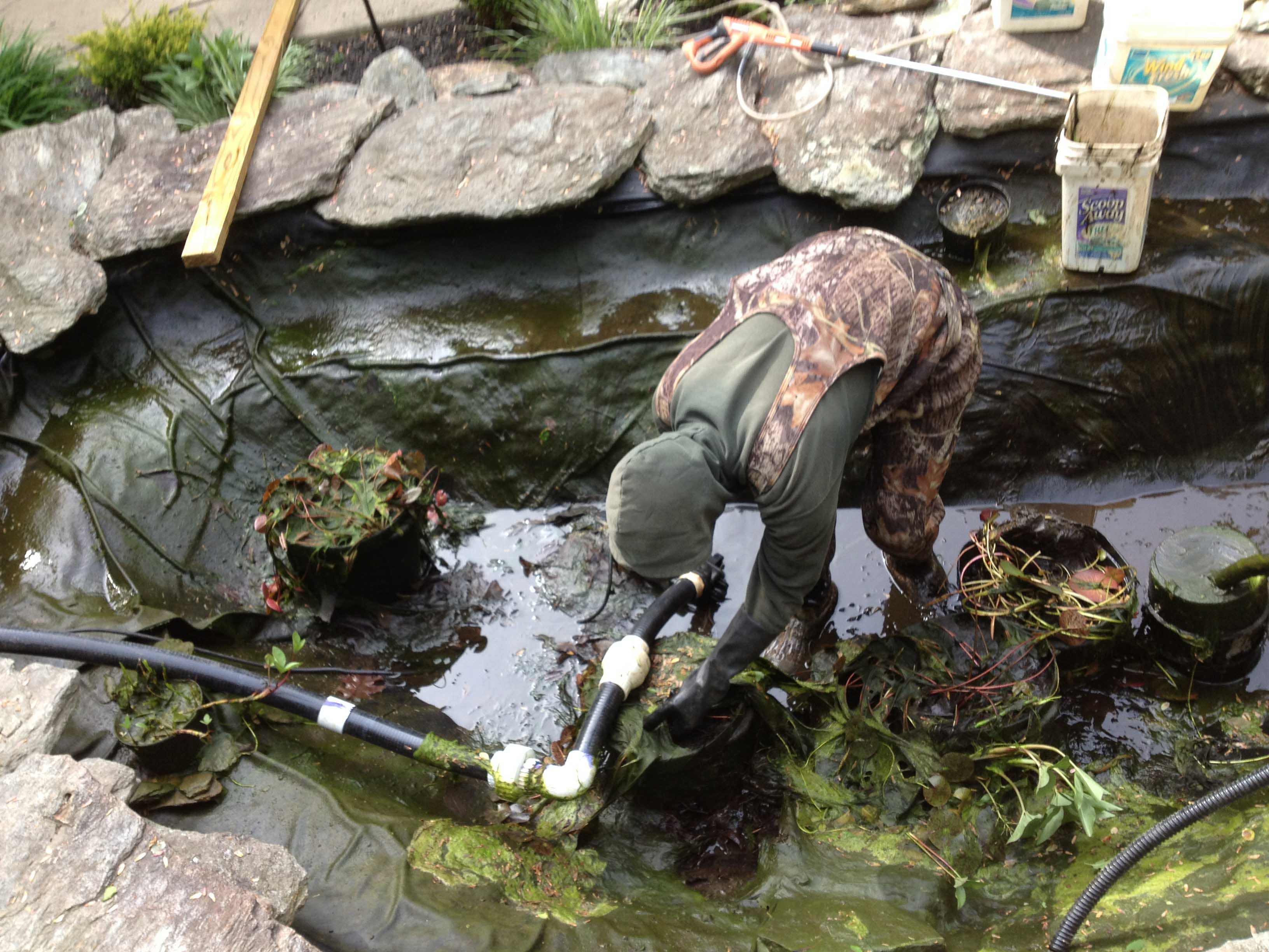 Touch N Foam Professional 10 Pond And Waterfall Cleaning Mistakes Baltimore