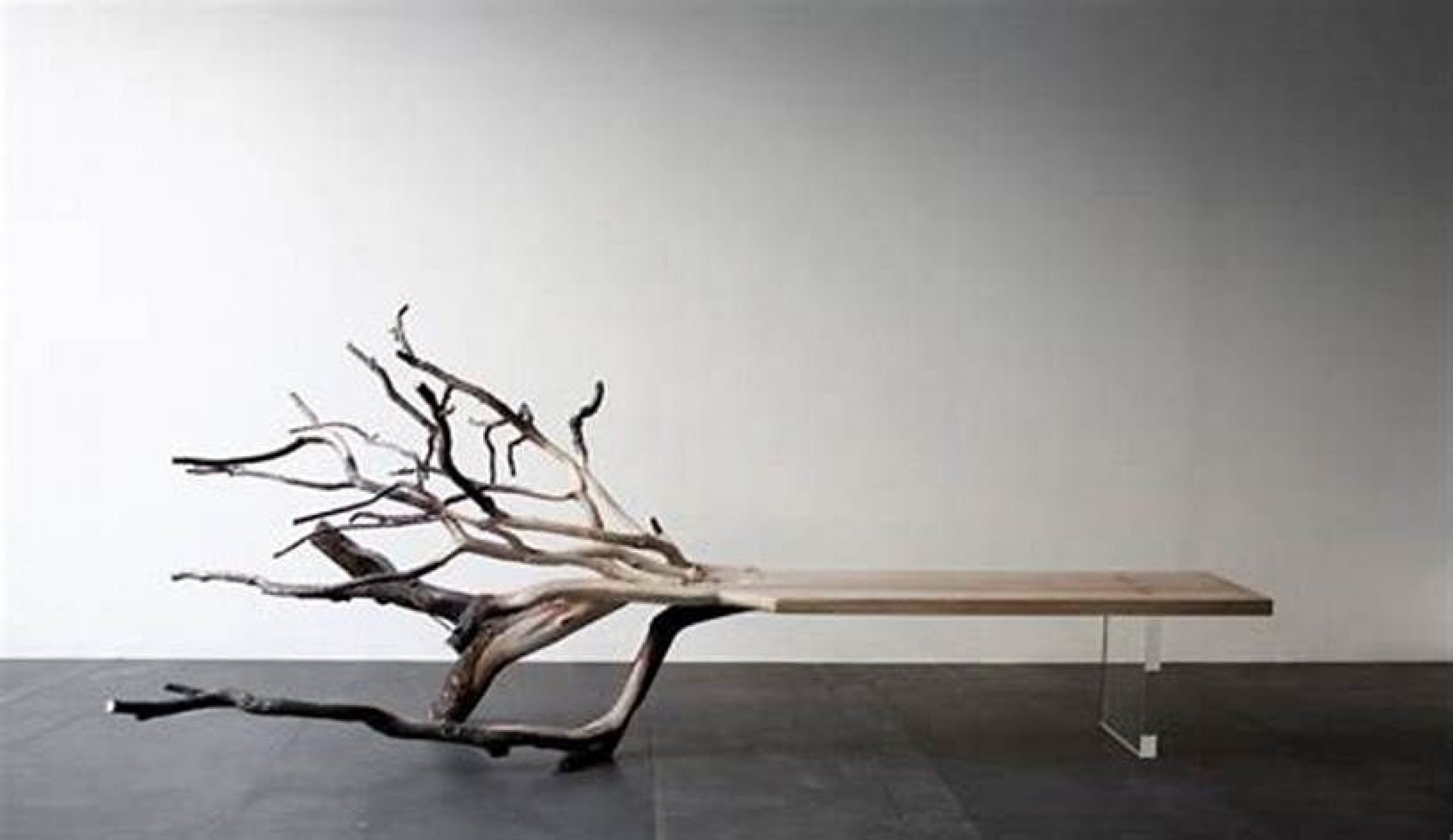 18 Furniture Designs Inspired By Nature Arch2o Com