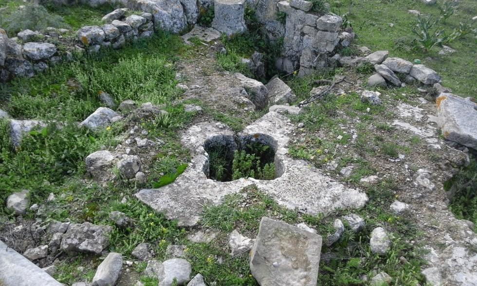 baptistere belalis Maior