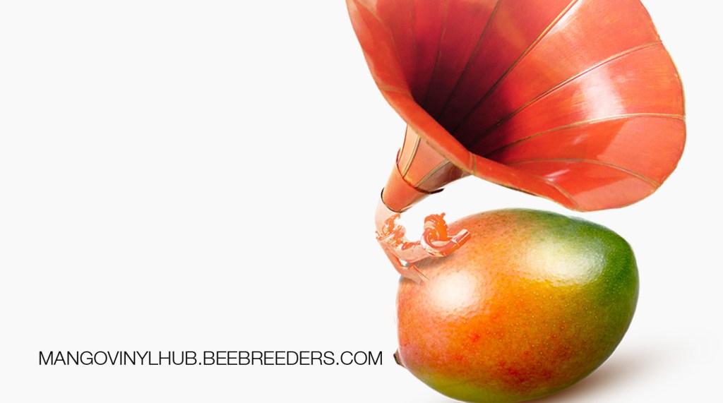 1.mango vinyl hub1.3