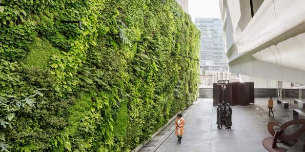 Growing Up Specifying Living Walls For Every - Green Walls In New York