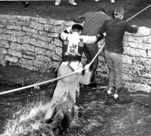 University of Illinois students  climb out of the Boneyard Creek after losing a game of tug-of-war, circa 1953, Record Series 39/2/20.