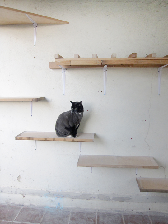 The Egg Chair Platform For Cats | Archivo Diario