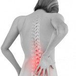 Anatomy picture of back pain