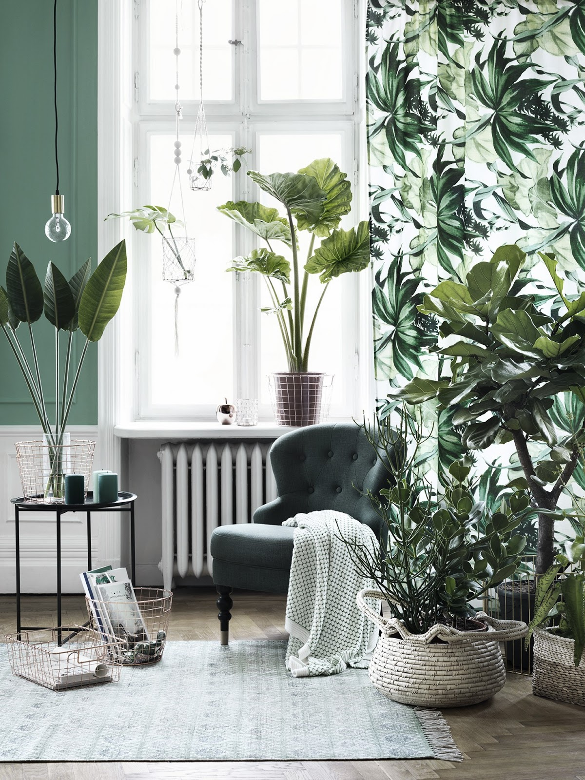 Big Plants For Living Room Revitalize Your Home With Lush Indoor Plants In Every Room