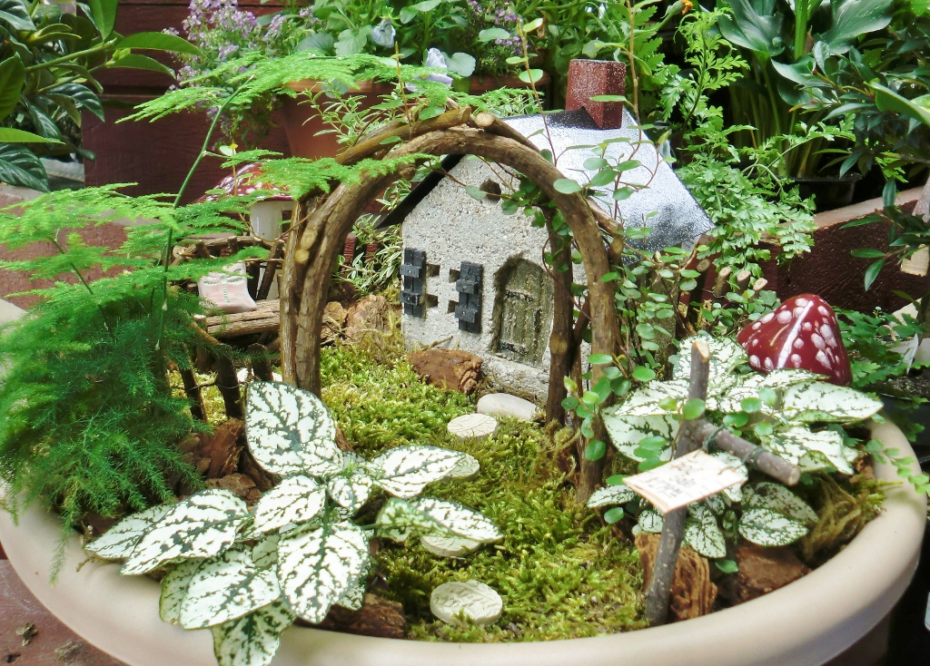 large fairy garden using all real plants