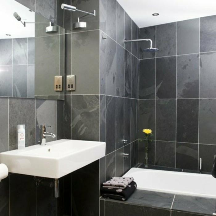 Modele Salle De Bain 4m2. génial stock de aménager une salle de bain ...