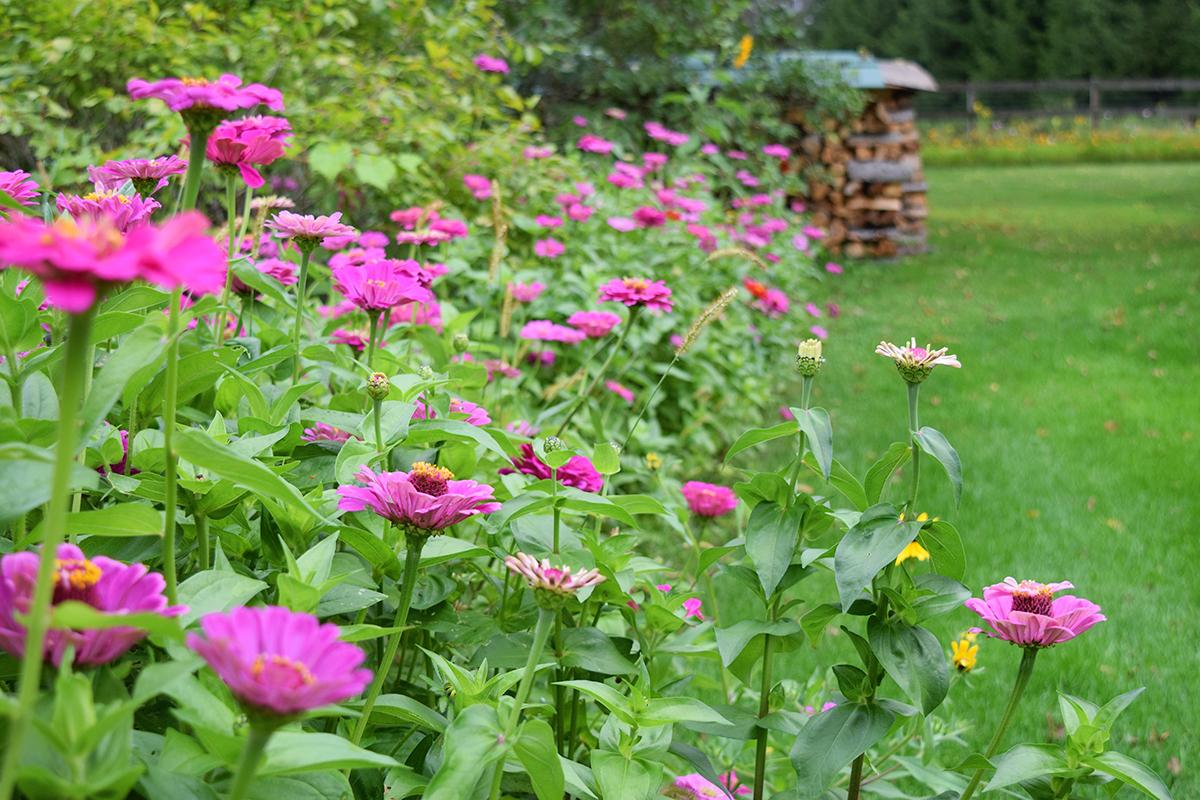 Bordure Jardin Solide | Bordure De Jardin Anthracite Meilleures ...