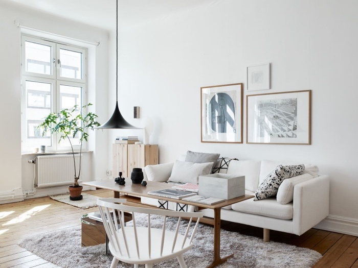 Deco Salon Gris Blanc Scandinave