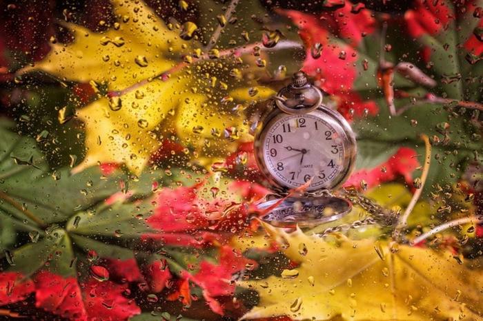 Rain Fall On Flowers Wallpaper 1001 Jolies Exemples D Images D Automne Pour Fond D 233 Cran