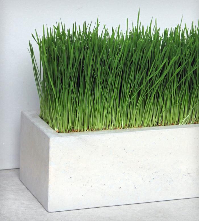 pflanzkübel aus beton selber gießen   loveer garten. pflanzkübel ...