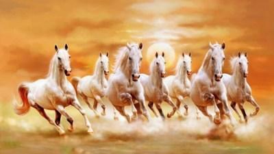 Mehr als 70 super schöne Pferde Bilder! - Archzine.net