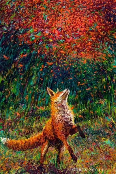 Iris Scott, Fox