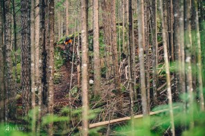 Jessie Mcauley dropping through the trees