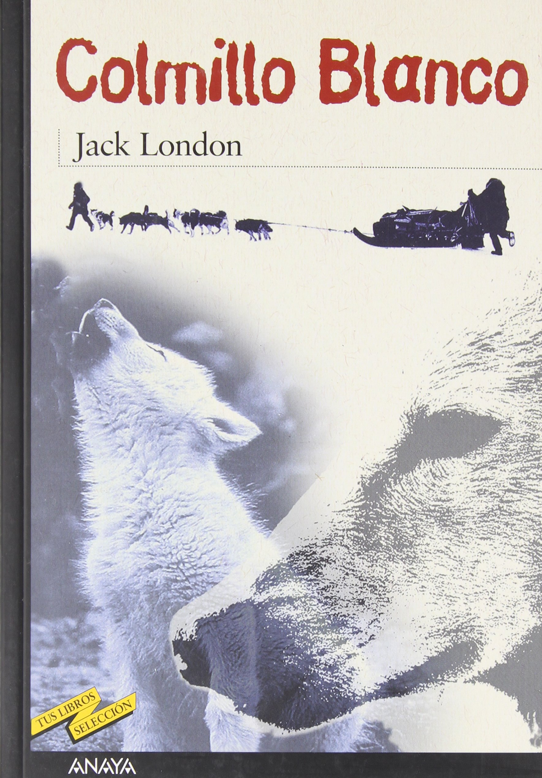 Colmillo Blanco Libro Cinco Obras Para Conocer Mejor A Jack London Area Libros