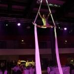 Argolla_Aerial_Silk_Acrobatic_Show_Kia_4